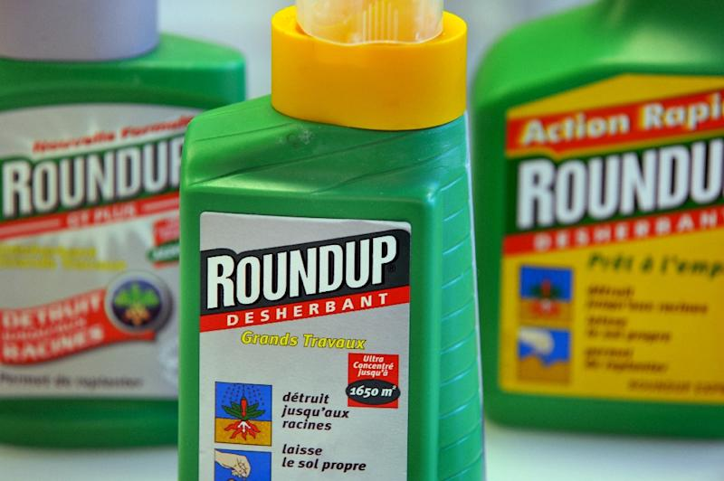 """IARC classified the herbicide glyphosate -- the active ingredient in Roundup -- as """"probably carcinogenic"""" on the basis of """"limited evidence"""" of cancer among humans (AFP Photo/Mychele Daniau)"""
