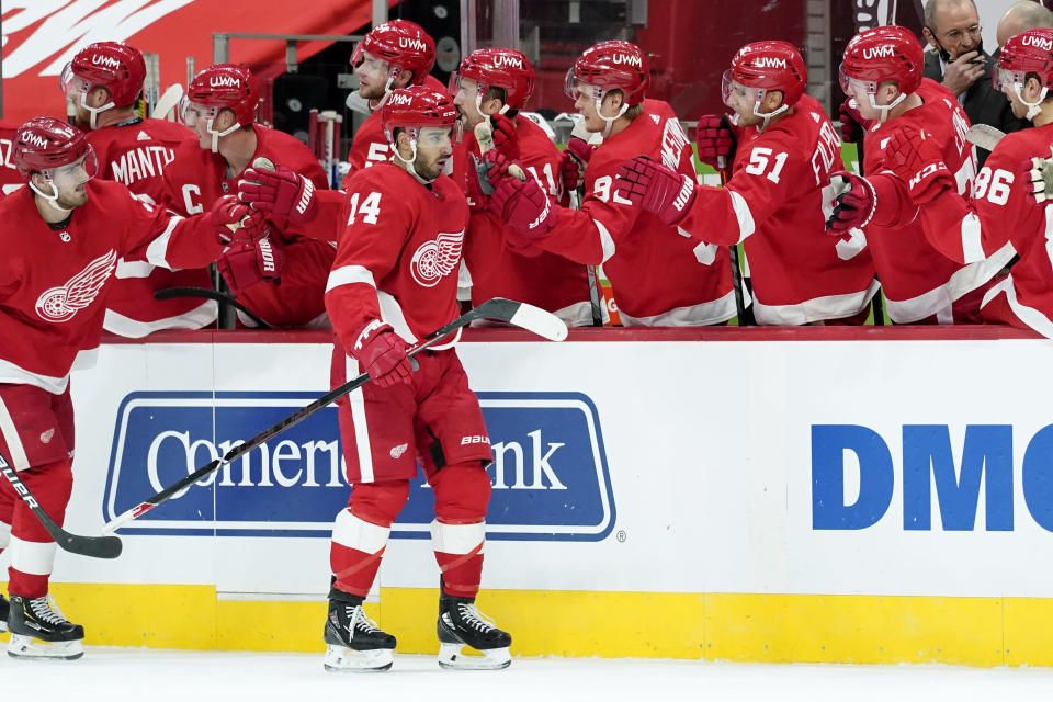 Detroit Red Wings center Robby Fabbri (14) celebrates his goal against the Carolina Hurricanes in the third period of an NHL hockey game Saturday, Jan. 16, 2021, in Detroit. (AP Photo/Paul Sancya)