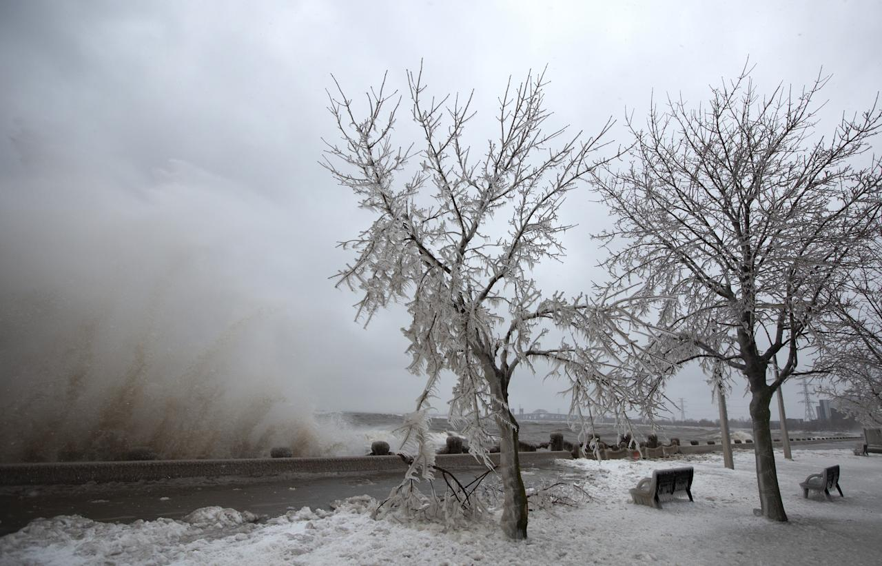 <p>Some ice-encrusted trees are breaking under the weight as waves crash into the break wall of Spencer Smith Park in Burlington, Ont. on February 12, 2019. THE CANADIAN PRESS/Peter Power </p>
