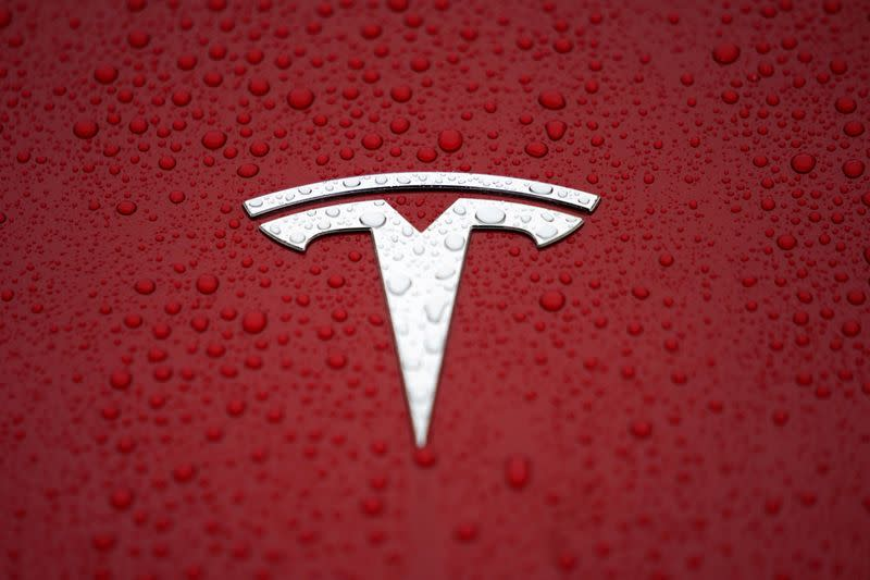 FILE PHOTO: The Tesla logo is seen