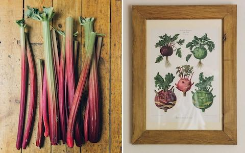 rhubarb and a vegetable print at The Black Swan - Credit: India Hobson