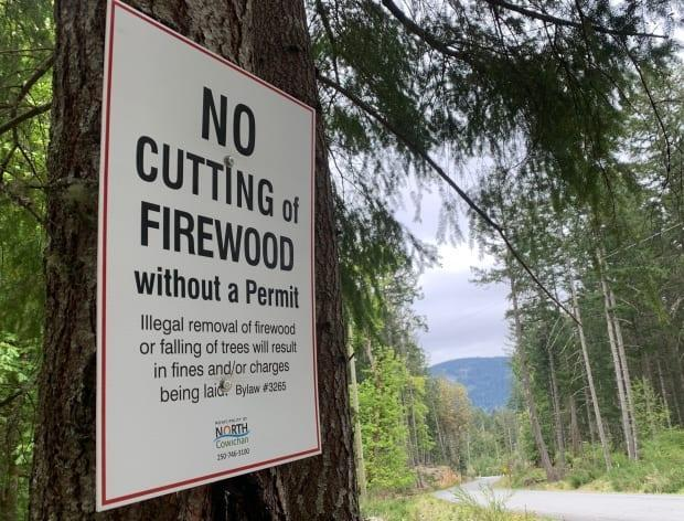The municipality says it has stepped up patrols and increased signage as a result of the increasing number of trees being poached.
