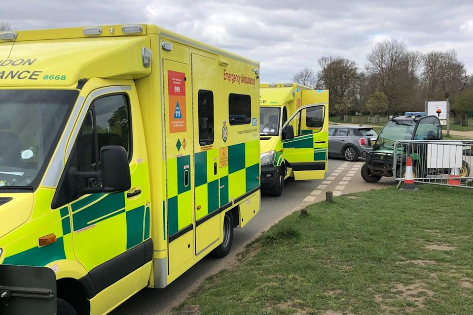 <p>Paramedics attended to both the cyclist and the child</p> (@MPSRoyal_Parks)