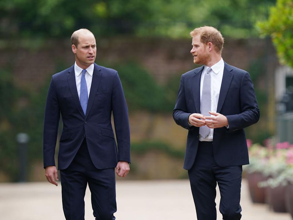 Prince William and Prince Harry talking.