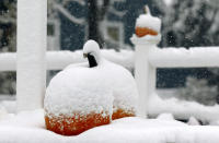 Snow covers pumpkins for sale at Trombetta's Farm during the season's first snowfall, Friday, Oct. 30, 2020, in Marlborough, Mass. (AP Photo/Bill Sikes)