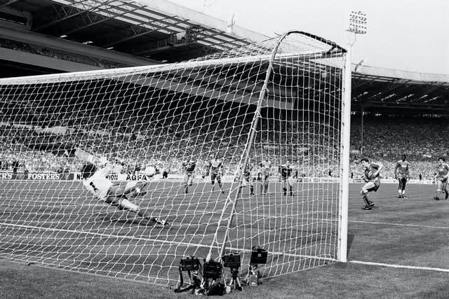 Wimbledon goalkeeper Dave Beasant made history in spectacular style (PA)