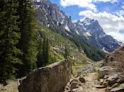 """<p>While you're visiting Grand Teton National Park, make a point of hiking one of the top trails in the park, <a href=""""https://www.tripadvisor.com/Attraction_Review-g143029-d104348-Reviews-Jenny_Lake_Trail-Grand_Teton_National_Park_Wyoming.html"""" rel=""""nofollow noopener"""" target=""""_blank"""" data-ylk=""""slk:Jenny Lake Trail"""" class=""""link rapid-noclick-resp"""">Jenny Lake Trail</a>. At 7.7 miles, we're betting that you'll gasp when you see Garnet Canyon, Hurricane Pass, and of course, the once-in-a-lifetime mountain vistas.</p><p><a class=""""link rapid-noclick-resp"""" href=""""https://go.redirectingat.com?id=74968X1596630&url=https%3A%2F%2Fwww.tripadvisor.com%2FAttraction_Review-g143029-d104348-Reviews-Jenny_Lake_Trail-Grand_Teton_National_Park_Wyoming.html&sref=https%3A%2F%2Fwww.countryliving.com%2Flife%2Ftravel%2Fg24487731%2Fbest-hikes-in-the-us%2F"""" rel=""""nofollow noopener"""" target=""""_blank"""" data-ylk=""""slk:PLAN YOUR HIKE"""">PLAN YOUR HIKE</a></p>"""