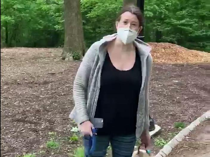 Amy Cooper trended after a confrontation with a black man who asked her to leash her dog in Manhattan's Central Park.