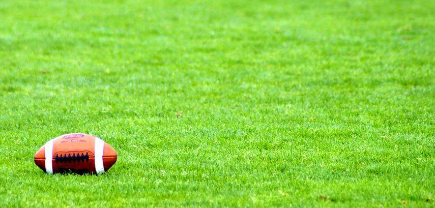 <p>Gather a group of friends and find the biggest lawn you possibly can to play a rousing Sunday fun day game of touch football in the park.</p>