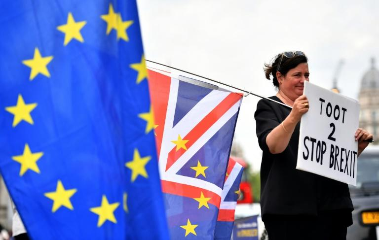 An anti-Brexit protest took place outside the Houses of Parliament in London on June 13, 2018