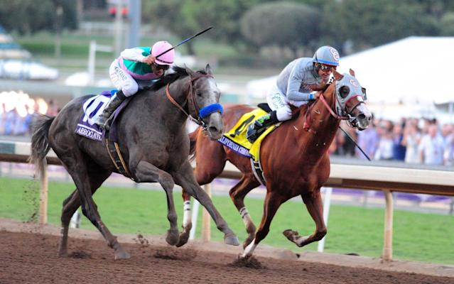 Arrogate and Mike Smith (left) beat California Chrome at the Breeders Cup Classic last November - Rex Features
