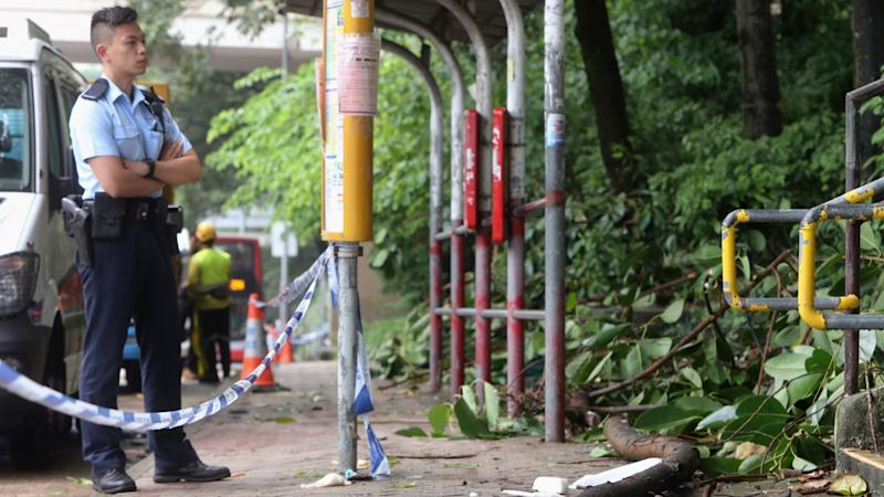 Family of Indonesian domestic helper killed by falling tree branch in Hong Kong appeals for help