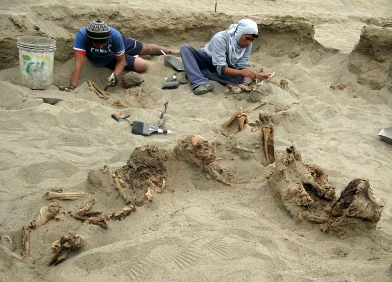 Excavations near the northern Peruvian coastal city of Trujillo began in 2011 when archaeologists uncovered the remains of 42 children and 76 llamas
