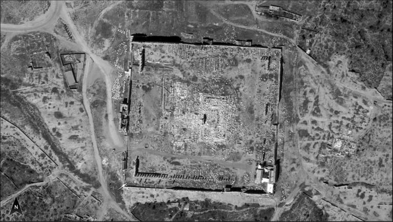 Israel releases spy satellite images of Syria's Palmyra
