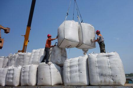 Workers unload sacks of soybeans imported from Russia at Heihe port in Heilongjiang province, China June 3, 2018. REUTERS/Stringer/Files