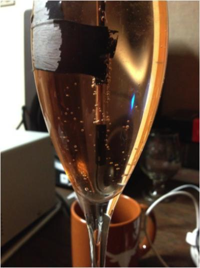 12_28_Hydrophone in Champagne Glass