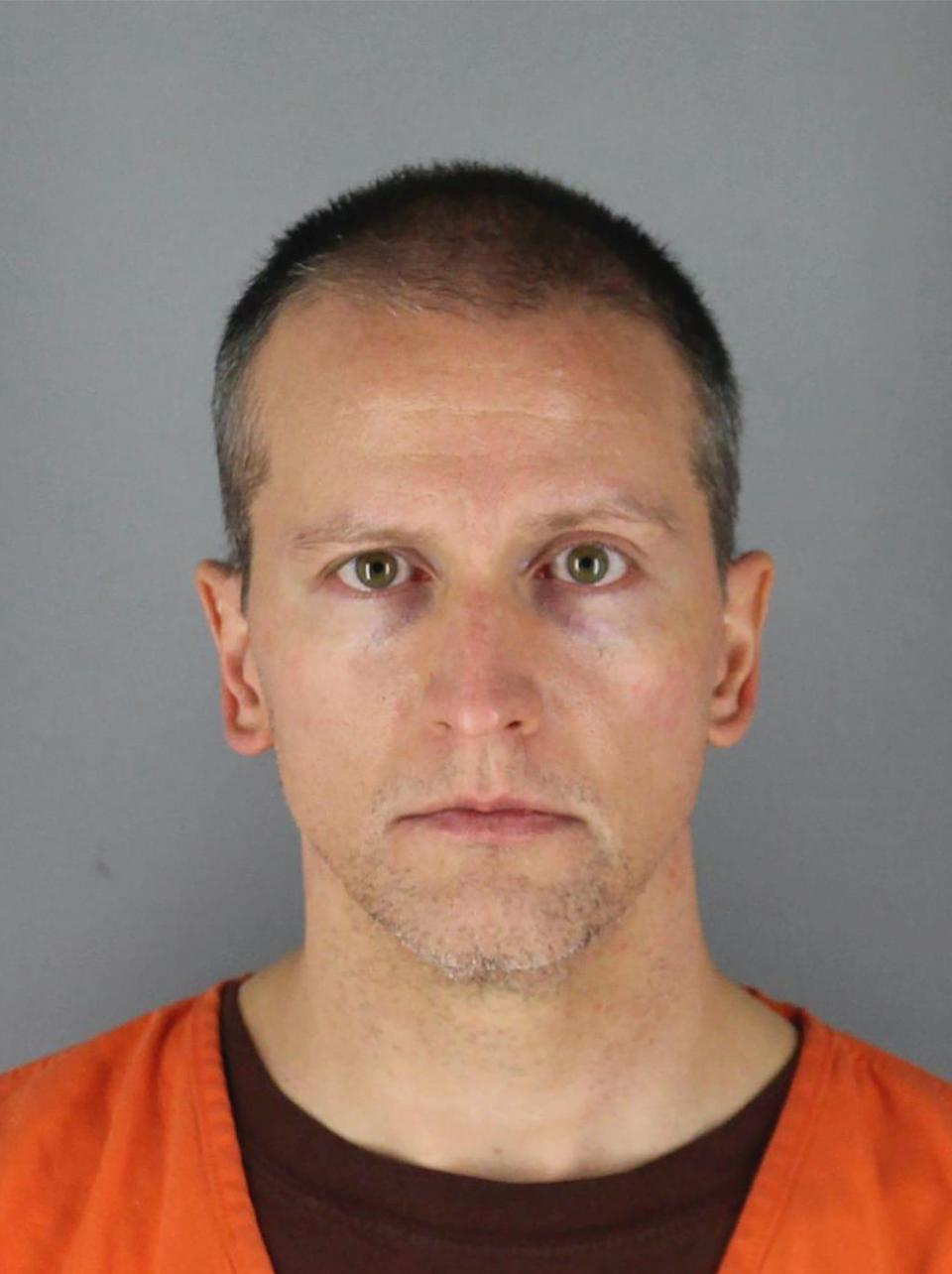 Former Minneapolis police officer Derek Chauvin faces charges of second-degree murder and manslaughter.