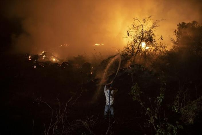 A volunteer throws water to control a fire in the Pantanal, Brazil