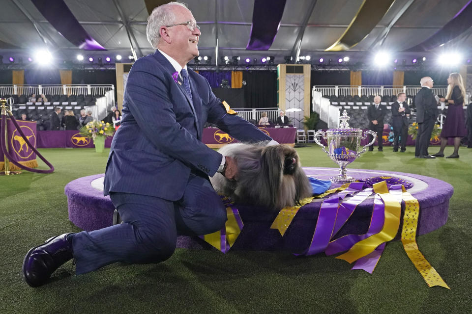 David Fitzpatrick, owner, breeder and handler, poses with Wasabi, a Pekingese, after the dog won Best in Show at the Westminster Kennel Club dog show, Sunday, June 13, 2021, in Tarrytown, N.Y. (AP Photo/Kathy Willens)