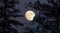 """<p>March is when the season begins to change toward spring, prompting worms to emerge from underground and thus giving the <a href=""""http://www.almanac.com/full-moon-names"""" class=""""link rapid-noclick-resp"""" rel=""""nofollow noopener"""" target=""""_blank"""" data-ylk=""""slk:worm moon"""">worm moon</a> its name. In 2021, you'll be able to see the worm moon on March 28. </p>"""
