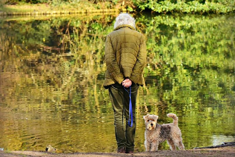 The benefits of having a dog are felt most by people living along, according to the latest research (Pixabay)