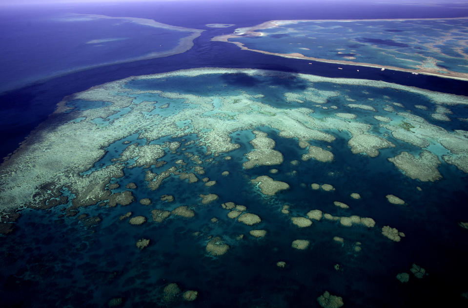 Image: The Great Barrier Reef, Queensland, Australia (TonyFeder / iStockphoto/Getty Images)