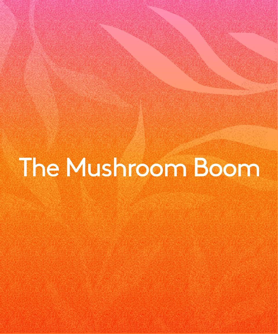 """<strong><h2>The Mushroom Boom</h2></strong><br>From adaptogen lattes to <a href=""""https://www.refinery29.com/en-us/2019/08/238497/microdosing-psilocybin-mushrooms-benefits-depression-anxiety"""" rel=""""nofollow noopener"""" target=""""_blank"""" data-ylk=""""slk:psychedelic microdosing"""" class=""""link rapid-noclick-resp"""">psychedelic microdosing</a>, there's no question mushrooms are having a moment. And though they've long been used in traditional Chinese medicine, Ko points out, they're now becoming a <a href=""""https://www.refinery29.com/en-us/mushroom-skin-care-trend"""" rel=""""nofollow noopener"""" target=""""_blank"""" data-ylk=""""slk:popular skin-care ingredient"""" class=""""link rapid-noclick-resp"""">popular skin-care ingredient</a>, too.<br> <br>You're likely to spot species like shiitake in dark-spot serums, thanks to its enzymes that can slow down melanin production. """"While there's not much research that shows shiitake mushrooms directly have an impact on skin hyperpigmentation, mushrooms like shiitake do contain tyrosinase enzymes which could hypothetically inhibit some melanin production,"""" says Ko. A 2016 study also found <a href=""""https://www.ncbi.nlm.nih.gov/pmc/articles/PMC6274557/"""" rel=""""nofollow noopener"""" target=""""_blank"""" data-ylk=""""slk:shiitake, oyster, and white mushroom extracts"""" class=""""link rapid-noclick-resp"""">shiitake, oyster, and white mushroom extracts</a> to have antioxidant, anti-inflammatory, and antibacterial properties when mixed into a base cream."""