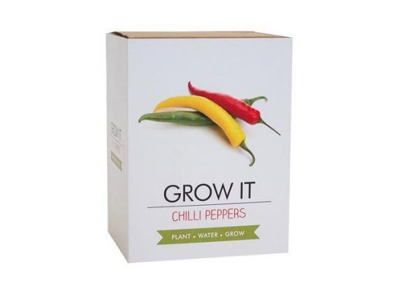 Growing your own chillis means you can have a much wider range than what is usually available in supermarkets (Studio)