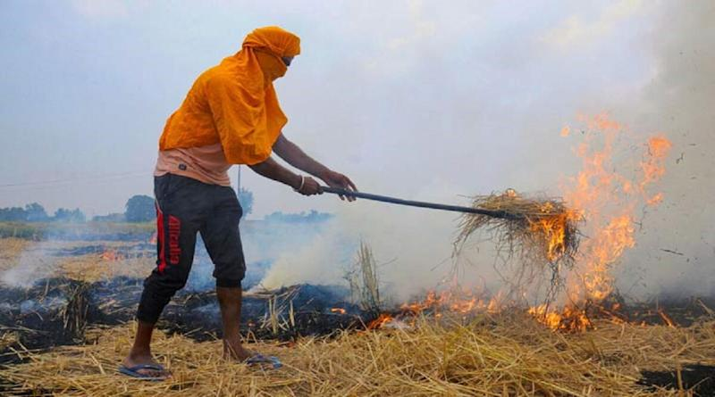 NASA Satellite Images Show Early Stubble Burning by Farmers in Punjab And Haryana