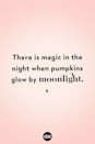 <p>There is magic in the night when pumpkins glow by moonlight.</p>