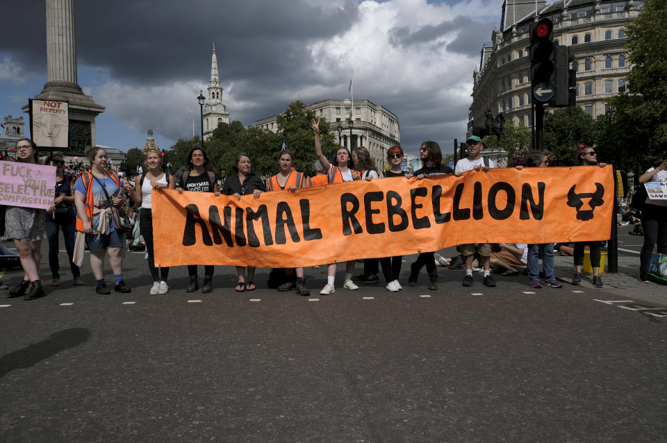 TRAFALGAR SQUARE, LONDON, UNITED KINGDOM - 2019/08/17: Activists hold a banner saying Animals rebellion during the protest in London. Animal rights activists marched in central London to protest against animal cruelty and also to demand an end on fishing, animal farming and animal experiments. (Photo by Andres Pantoja/SOPA Images/LightRocket via Getty Images)