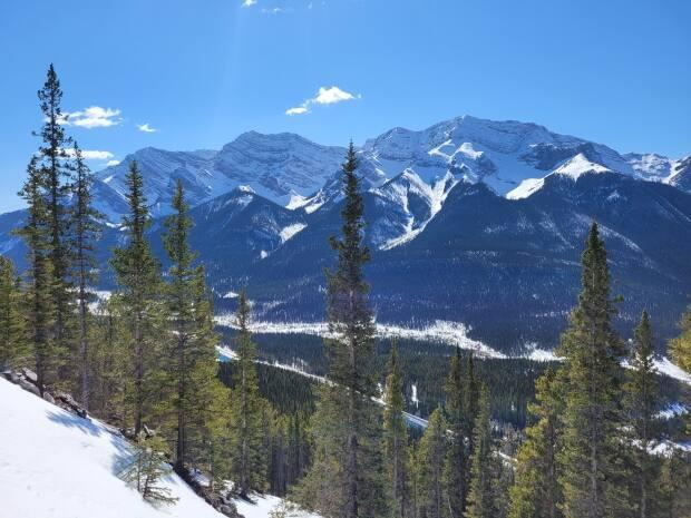 A view south from Ha Ling Trail, near Canmore, in southern Alberta. The photo was taken April 15, 2021. (Sarah Rieger/CBC - image credit)