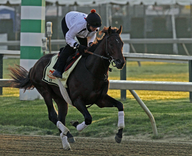 Exercise rider Jennifer Patterson gallops Preakness Stakes favorite and Kentucky Derby winner Orb at Pimlico Race Course Friday, May 17, 2013 in Baltimore. The Preakness Stakes horse race is scheduled for Saturday. (AP Photo/Garry Jones)