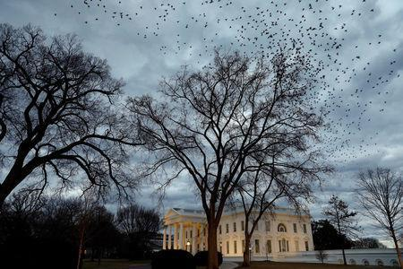 Birds fly over the White House in Washington, U.S., on the second day of Government shutdown, January 21, 2018. REUTERS/Yuri Gripas
