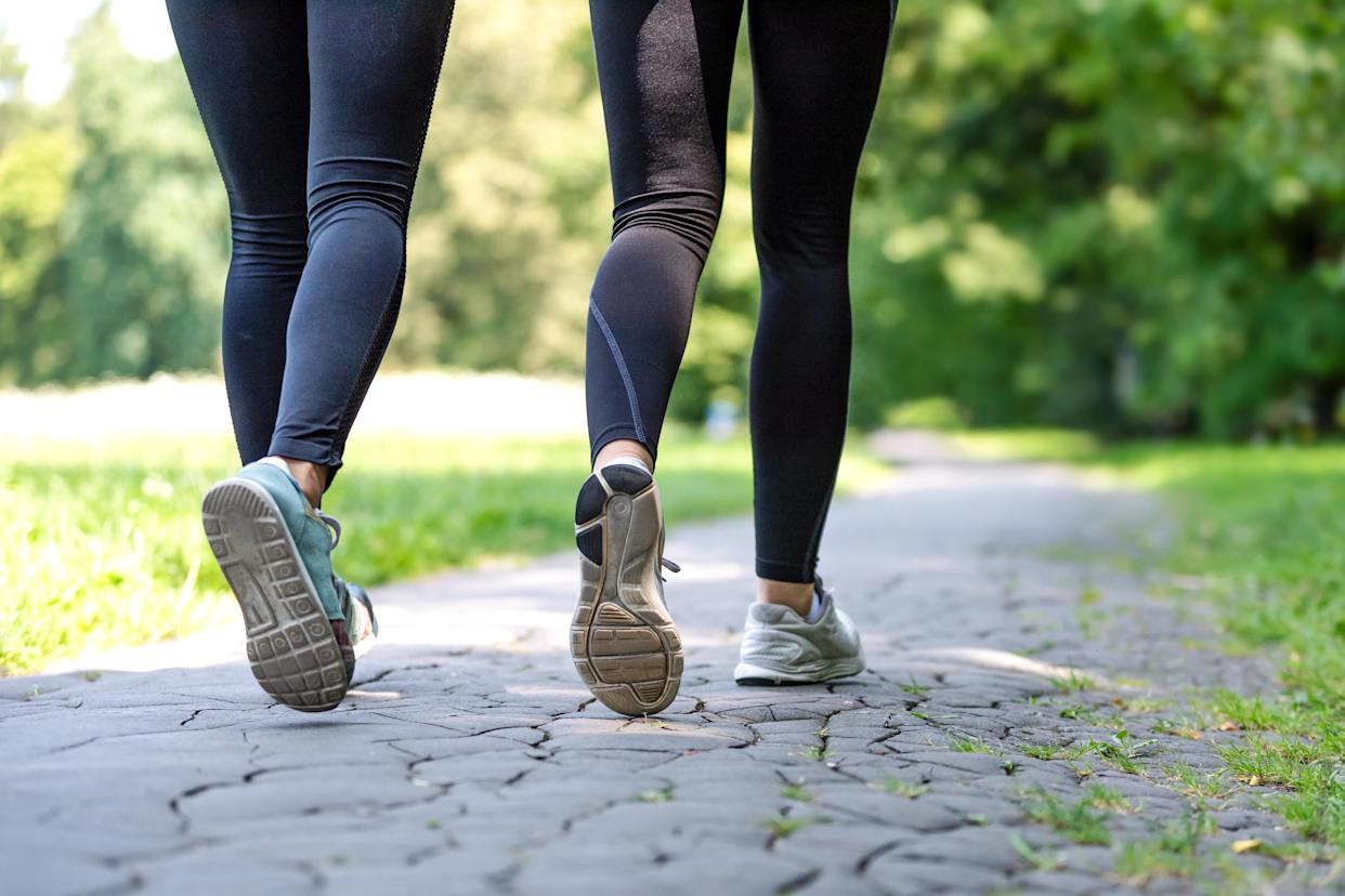 Wellness and fitness concept — low-angle view of running women in the park on a sunny morning.