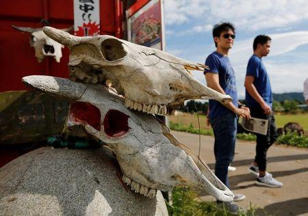 Tourists from Philippines walk past irradiated cattle skulls at the Farm of Hope, near Tokyo Electric Power Co's (TEPCO) tsunami-crippled Fukushima Daiichi nuclear power plant, in Namie town, Fukushima prefecture, Japan May 17, 2018.   REUTERS/Toru Hanai