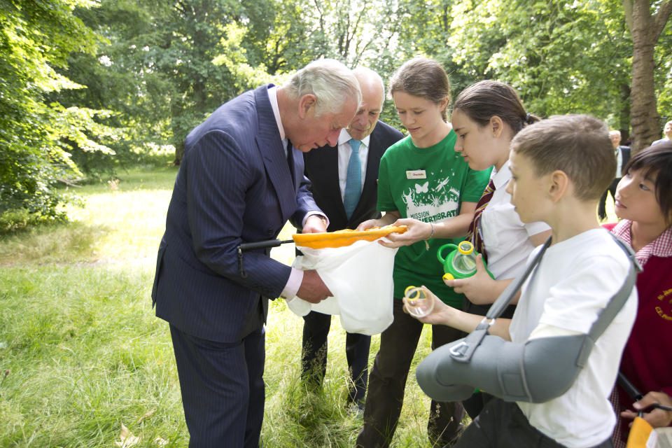 LONDON, UNITED KINGDOM - JULY 13:  Prince Charles, Prince of Wales inspects insects with Loyd Grossman and pupils  St.James & St.John Church of England Primary School as he launches the new Royal Parks charity, of which he is a patron, at Hyde Park on July 13, 2017 in London, United Kingdom. (Photo by Jeff Gilbert - WPA Pool/Getty Images)