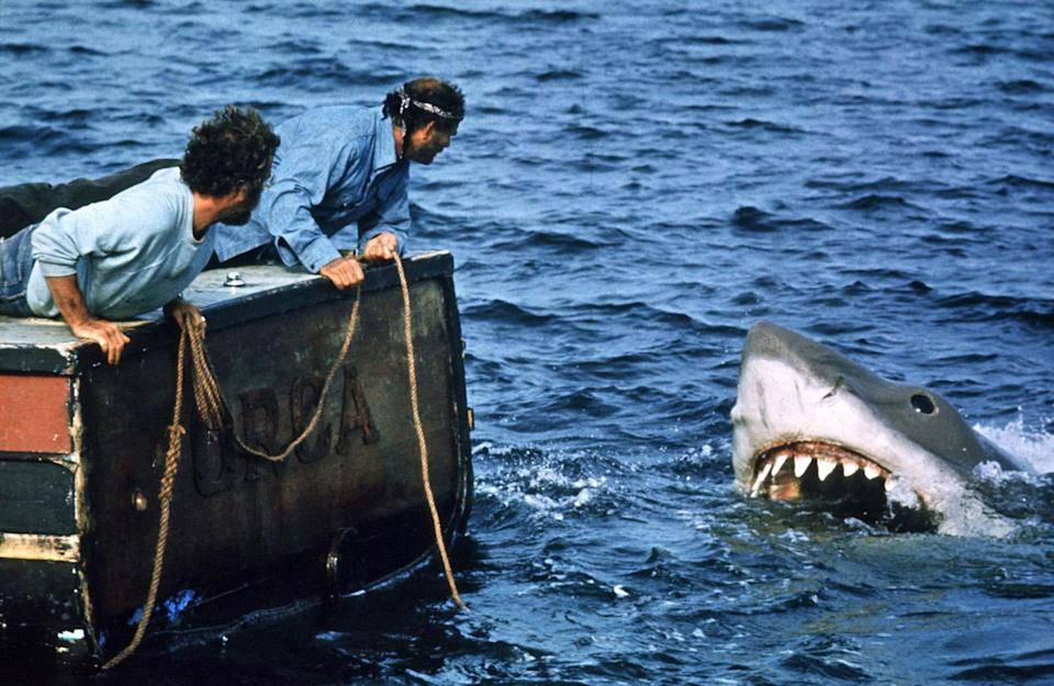 richard dreyfuss and robert shaw seeing the shark in jaws