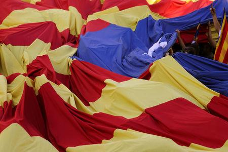 People carry a huge Estelada (Catalan separatist flag) during a rally on Catalonia's national day 'La Diada' in Barcelona, Spain, September 11, 2017. REUTERS/Susana Vera