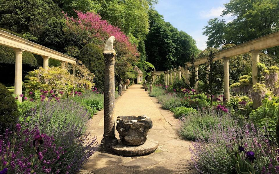 Glorious: the wild and wonderful landscape of the Peto Garden at Iford Manor  - Marianne Cartwright-Hignett