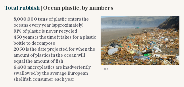 Total rubbish | Ocean plastic, by numbers