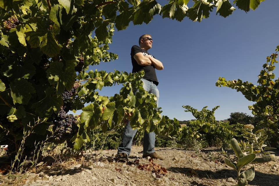 """At Tablas Creek Vineyard, in the Adelaida district west of Paso Robles, California, Jason Haas, partner and general manager, is growing grape varieties that require very little water. <span class=""""copyright"""">(Carolyn Cole/Los Angeles Times)</span>"""