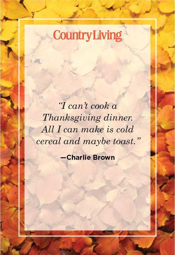 """<p>""""I can't cook a Thanksgiving dinner. All I can make is cold cereal and maybe toast.""""</p>"""