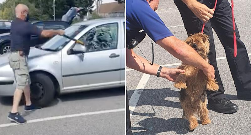 A man shatters a car window with an axe to free a terrier. The terrier is also pictured with police.
