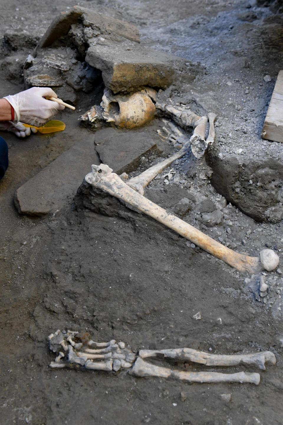 The skeletons are intact despite previous looting at the site (AP)_