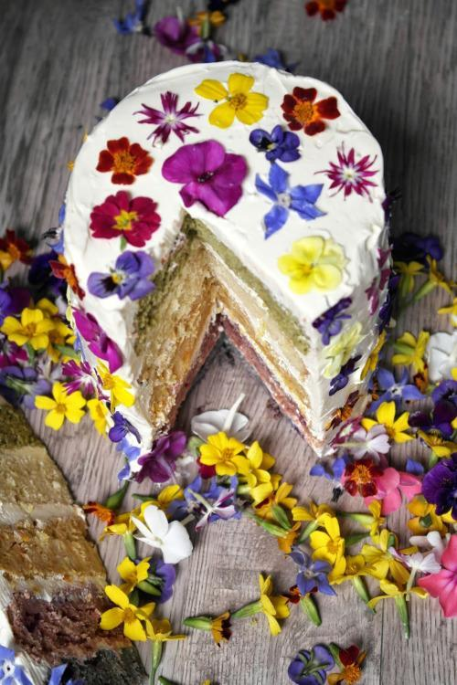 Cake Of The Day Rainbow With Edible Flowers