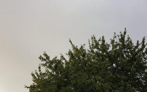 Gloomy skies stopped Britons from seeing a partial solar eclipse - Credit: TWITTER / @ALITWONK