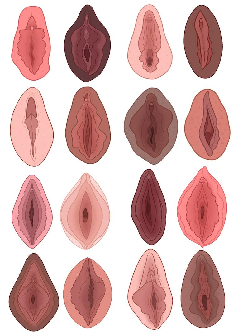 The museum is designed to debunk problematic myths surrounding the vagina [Photo: Charlotte Willcox]