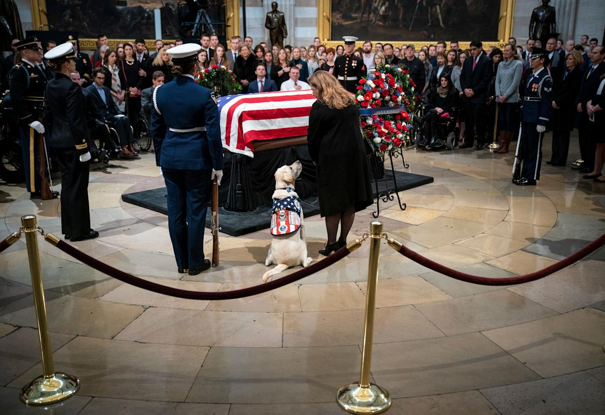 Sully, Bush's yellow Labrador service dog , sits near the casket of the former president as he lies in state at the U.S. Capitol.