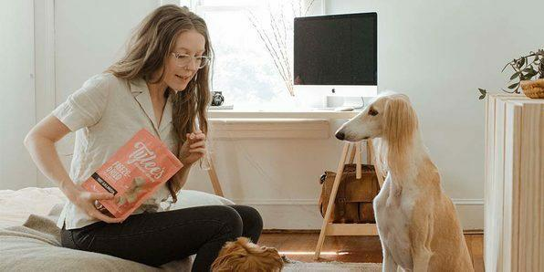 Teach your pup to sit, stay, and more.